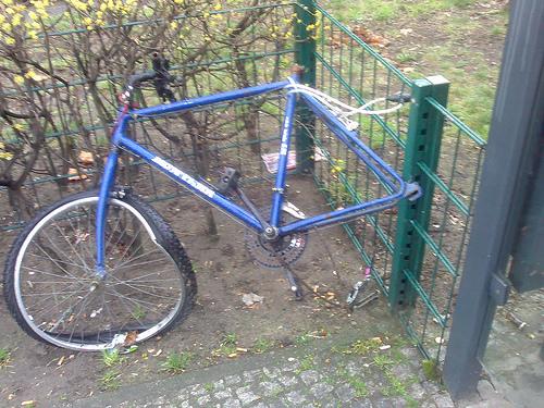kaputtes fahrrad im grunewald (märz 2007)