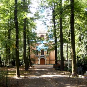kirche zwischen bäumen (Juli 2011)