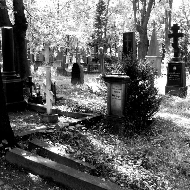 gräber und sonnenschein (Juli 2011)