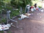 Bankenkrise im Dresdner Alaunpark im Mai 2008