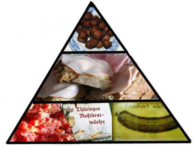 die nahrungspyramide neu gedacht