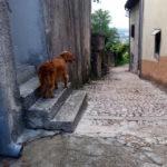 kroatienlogs #3: labin