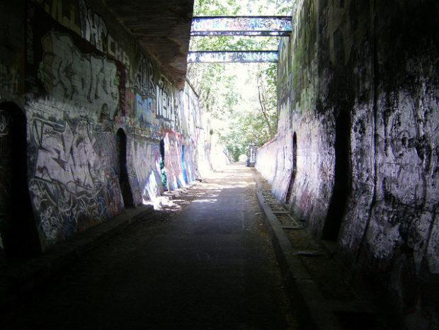 Fluchtunnel im Natur-Park Schöneberger Südgelände (Aug 2009)