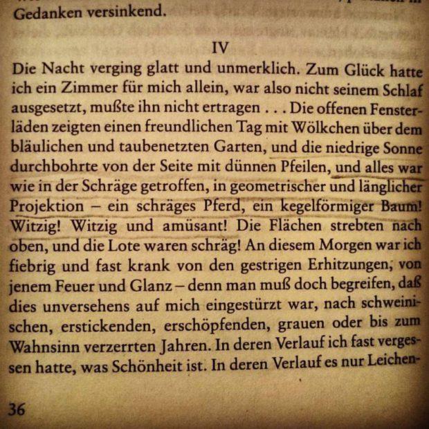 #gombrowicz #1960