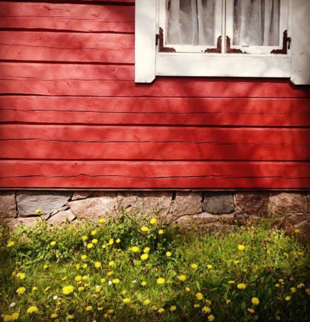 #sweden #familiengarten