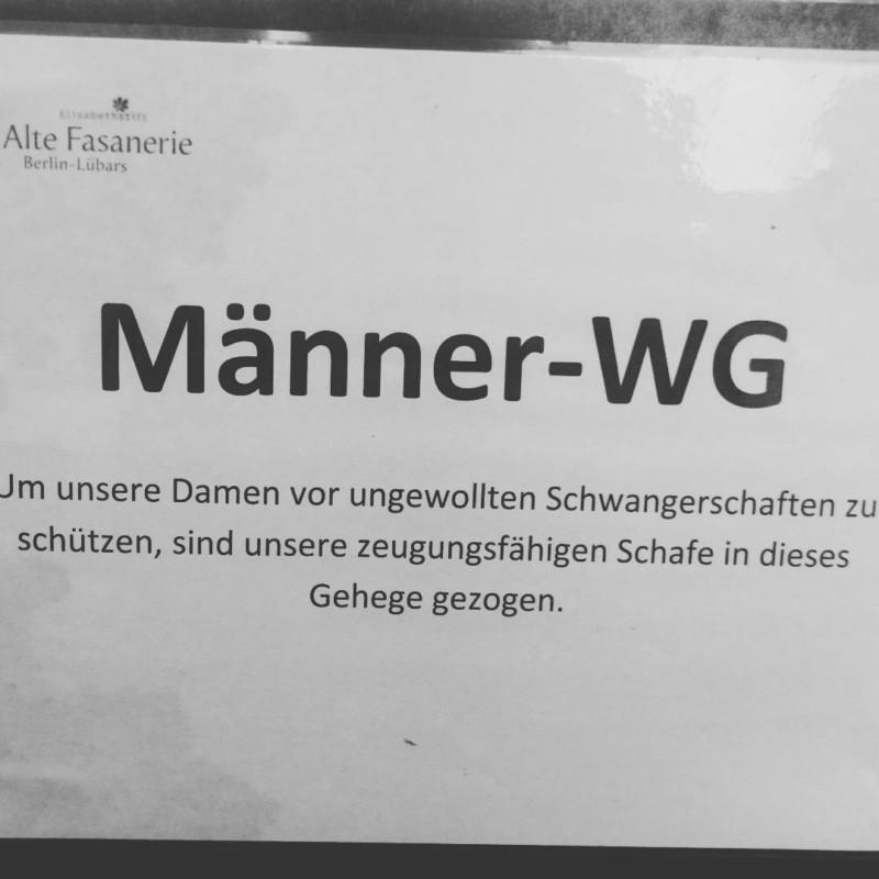 #männer-wg