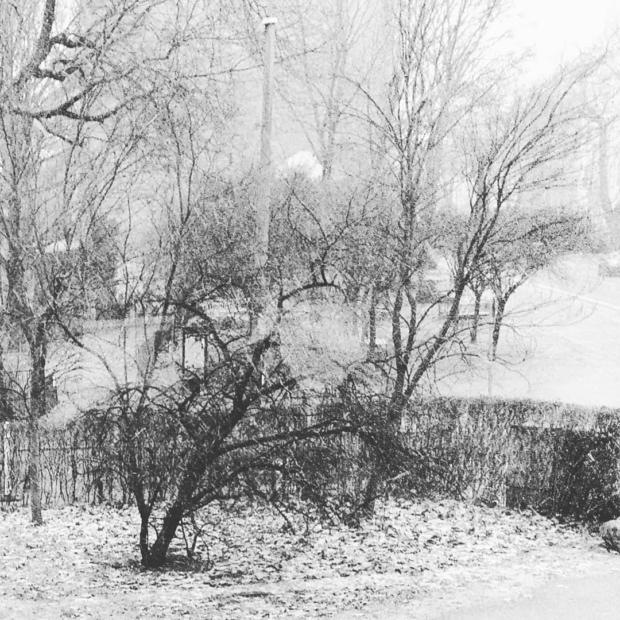 02/01/2019 - Schnee in Berlin
