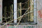 #templogs - Stasiheim Buchheide