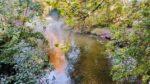 Herbst in #pankreich anner panke